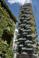 Bosco Verticale Yes 2