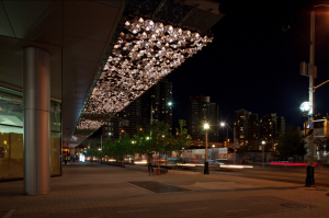 Maple Leaf Square Canopy2