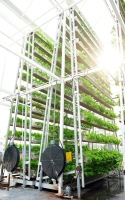 skygreens-vertical-farm-22