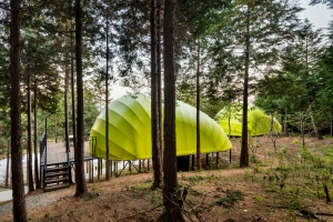 Glamping green one