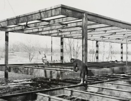 Arch2O-The-Farnsworth-House-Mies-van-der-Rohe-001-1