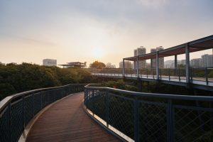 xiangmi-lib-walk